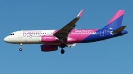 Wizz Air Fleet Of A320 Active Airfleets Aviation